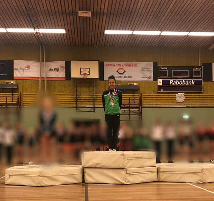 Rhönrad turnen Groningen Veendam Hoogezand Winschoten